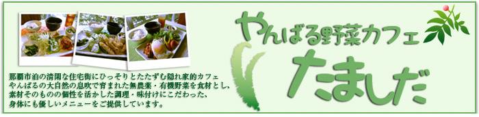 やんばる野菜カフェ たましだ