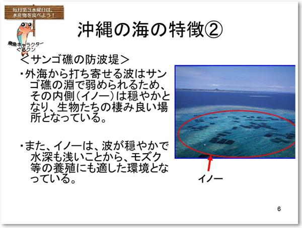 沖縄の海の特徴2 <サンゴ礁の防波堤>